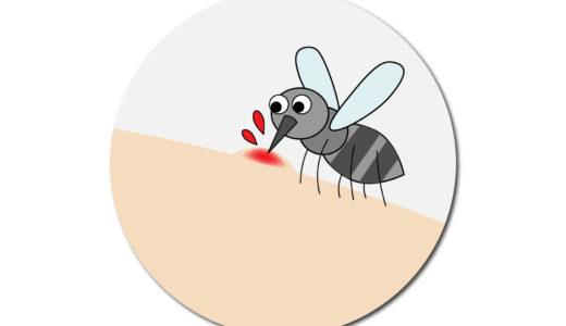 蚊に刺される人と刺されない人の違いって?蚊が好むのはこんな人!